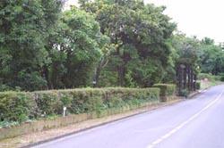 自然観察実習園 実習園散策7